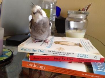 PearlBirdBooks